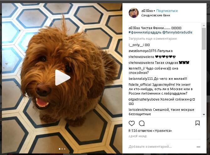 светлана бондарчук инстаграм официальный сайт